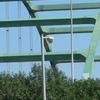 Siouxland Veterans Memorial Bridge
