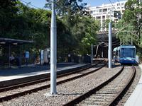 Wentworth Park MLR Station