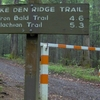 Snake Den Ridge Trailhead At Cosby Campground