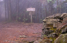 Snake Den Ridge Trail/Appalachian Trail Junction