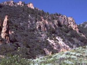 Jarbidge Wilderness