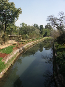 Apies River Flowing Through The Zoo