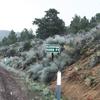 Walker Pass