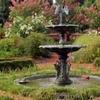 The State Botanical Garden