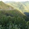 Rimutaka Range