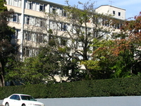 Studholme Colegio