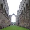 Studley Abbey 1