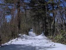 The Trail Crossing A Backbone