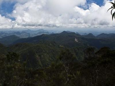 Sclerophyllous Montane Cloudforest