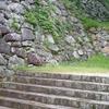 Surviving Stone Walls