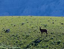 Taggart Lake & Beaver Creek Trail - Grand Tetons - Wyoming - USA