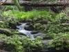 Tajor Falls - Bako NP - Sarawak