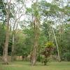 Takalik Abaj - Retalhuleu Department - Guatemala