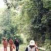 Tam Dao Parque Nacional