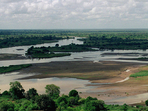 Tana River Primate National Reserve