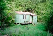 Tangihua Hut