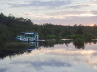 Tanjung Putting Parque Nacional