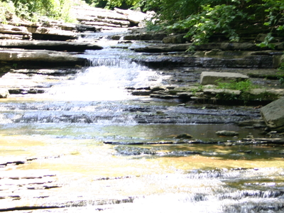 Tanyard Creek