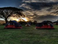 Tanzania Budget Camping - 7 days