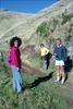 Tararua Hills - North Range Road
