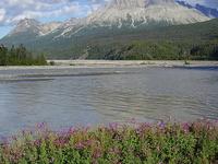 Tatshenshini-Alsek Provincial Park