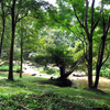 Pie Ton National Park