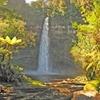 Tatu to Te Rerepahupahu Falls Track