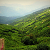 Gangtok - Darjeeling 5 Days