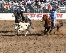 Team Roping Competition At Tucson