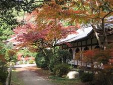 Temple De Daigoji