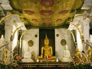 Sri Lanka - 4 Days Mini Tour