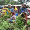 Tengeru Market Near Arusha - Tanzania