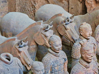2 - Day Terracotta Warriors And City Classic Tour