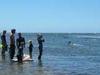 Te Tapuwae O Rongokako Marine Reserve - North Island - New Zealand
