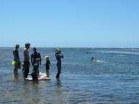 Te Tapuwae o Rongokako Marine Reserve