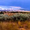Teton Valley Views