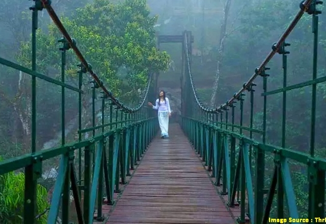 Ever Green Wayanad Package Photos