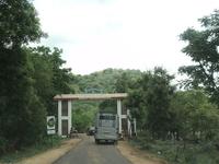 The Anamalai Wildlife Sanctuary