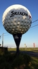 The Big Golf Ball