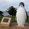 The Big Penguin