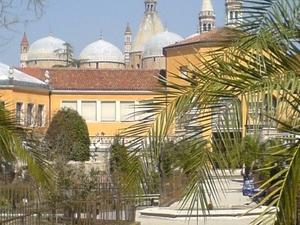 El Jardín Botánico de Padua