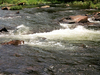 The Cossatot River