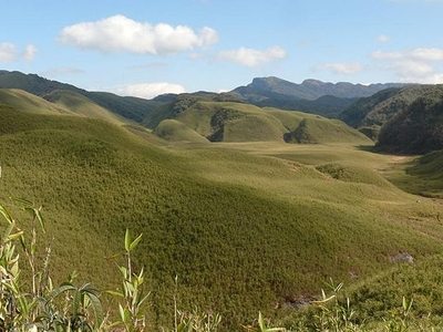 The Dzukou Valley