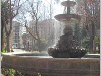 The Gardens of la Merced