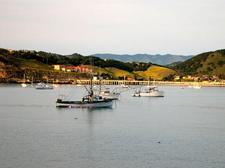 The Harbor At Avila Beach
