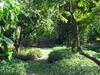 The  Kampong