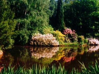 The Kámon Arboretum, Szombathely
