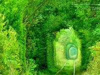 The Love Tunnel