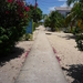 The Narrowest Street In The World, Placencia