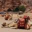 O Parque Arqueológico de Petra